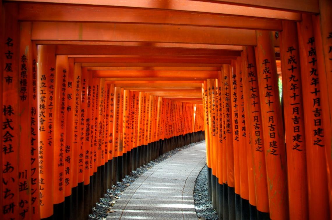 Torii gates—Fushimi Inari Shrine